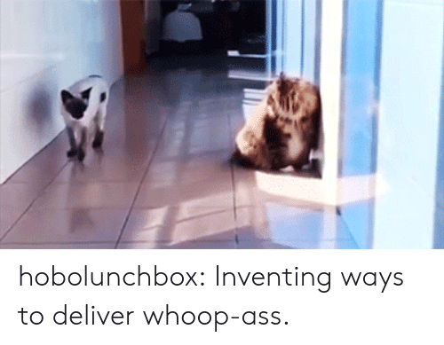 whoop: hobolunchbox: Inventing ways to deliver whoop-ass.