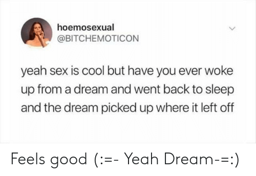 feels good: hoemosexual  @BITCHEMOTICON  yeah sex is cool but have you ever woke  up from a dream and went back to sleep  and the dream picked up where it left off Feels good (:=- Yeah Dream-=:)