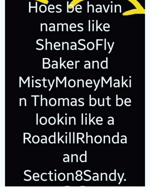 Hoes Be: Hoes be havin  names liKe  ShenaSoFlv  Baker and  MistyMoneyMaki  n Thomas but be  ookin like a  RoadkillRhonda  and  Section8Sandy.