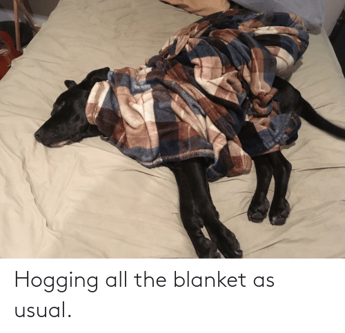 blanket: Hogging all the blanket as usual.