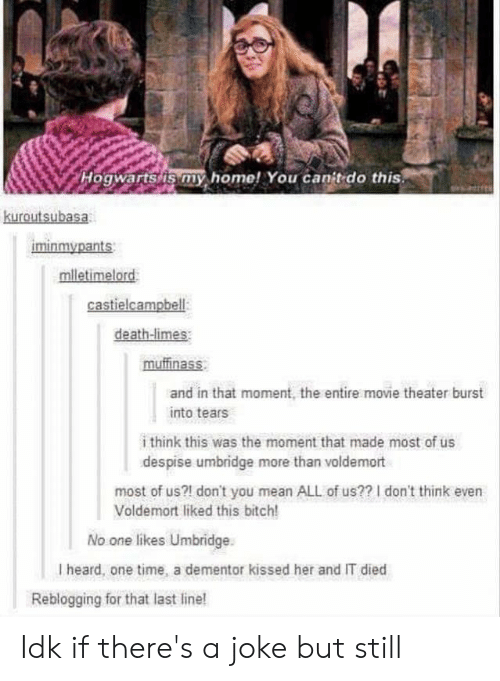 burst into tears: Hogwarts/is my home! You canit do this  kuroutsubasa  iminmypants  mlletimelord  castielcampbell  death-limes  muffinass  and in that moment, the entire movie theater burst  into tears  i think this was the moment that made most of us  despise umbridge more than voldemort  most of us?! don't you mean ALL of us?? I don't think even  Voldemort liked this bitch!  No one likes Umbridge  I heard, one time, a dementor kissed her and IT died  Reblogging for that last line! Idk if there's a joke but still