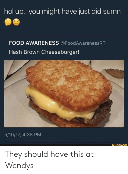 cheeseburger: hol u.. you might have just did sumn  FOOD AWARENESS @FoodAwarenessRT  Hash Brown Cheeseburger!  5/10/17, 4:38 PM  ifunny.co They should have this at Wendys