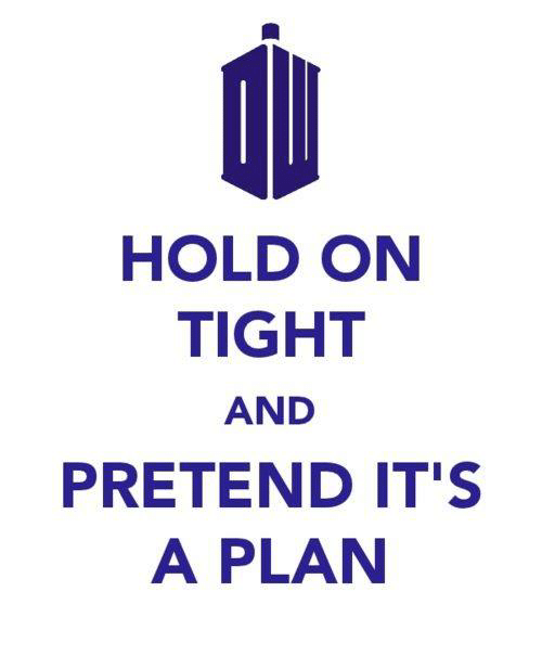 hold on tight: HOLD ON  TIGHT  AND  PRETEND IT'S  A PLAN