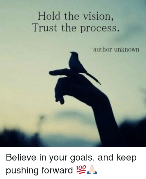 Goals, Memes, and Vision: Hold the vision,  Trust the process.  -author unknown Believe in your goals, and keep pushing forward 💯🙏🏻