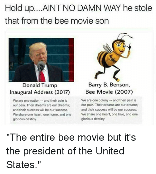 "presidents of the united states: Hold up. ...AINT NO DAMN WAY he stole  that from the bee movie son  Barry B. Benson,  Donald Trump  Inaugural Address (2017) Bee Movie (2007)  We are one colony --and their pain is  We are one nation and their pain is  our pain. Their dreams are our dreams;  our pain. Their dreams are our dreams;  and their success will be our success.  and their success will be our success.  We share one heart, one home, and one  We share one heart, one hive, and one  glorious destiny.  glorious destiny. ""The entire bee movie but it's the president of the United States."""