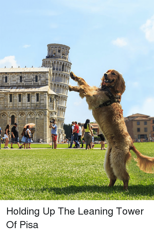 25+ Best Memes About Leaning Tower of Pisa