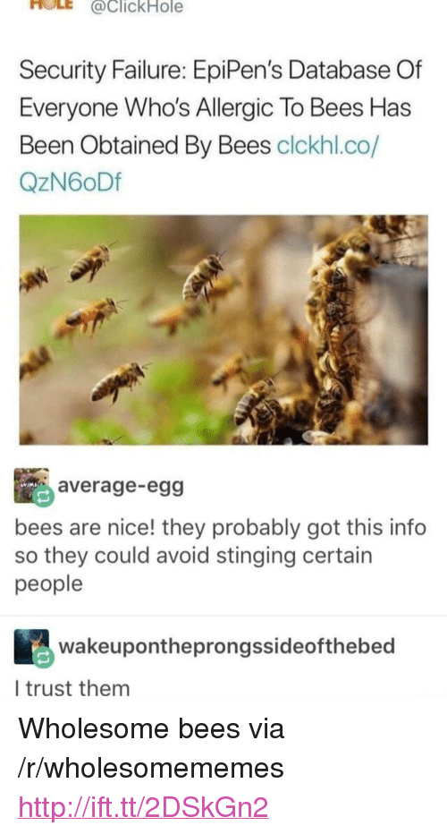 "stinging: HOLE  @clickHole  Security Failure: EpiPen's Database Of  Everyone Who's Allergic To Bees Has  Been Obtained By Bees clckhl.co/  QzN6oDf  average-egg  bees are nice! they probably got this info  so they could avoid stinging certain  people  wakeupontheprongssideofthebed  l trust them <p>Wholesome bees via /r/wholesomememes <a href=""http://ift.tt/2DSkGn2"">http://ift.tt/2DSkGn2</a></p>"