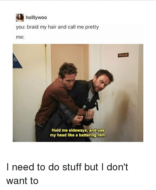 braid: holllywod  you: braid my hair and call me pretty  me:  PRIVATE  Hold me sideways, and use  my head like a battering ram I need to do stuff but I don't want to