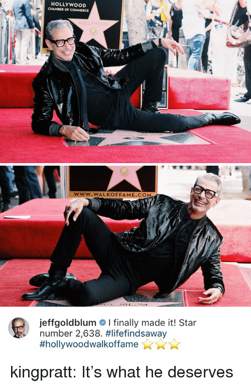 Tumblr, Blog, and Http: HOLLYWOOD  CHAMBER OF COMMERCE  r  HOLLYWOOD   www.WALKOFFAME.CO   jeffgoldblum # I finally made it! Star  number 2,638. kingpratt: It's what he deserves