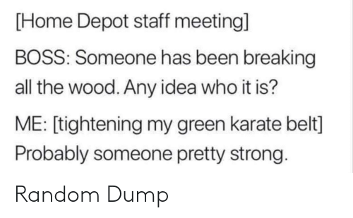 meeting: [Home Depot staff meeting]  BOSS: Someone has been breaking  all the wood. Any idea who it is?  ME: [tightening my green karate belt]  Probably someone pretty strong. Random Dump