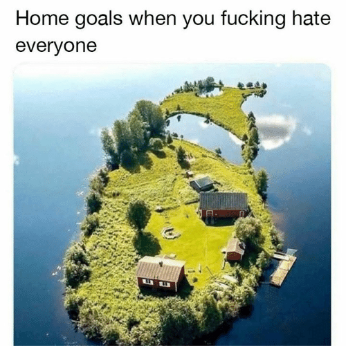 Fucking, Goals, and Memes: Home goals when you fucking hate  everyone