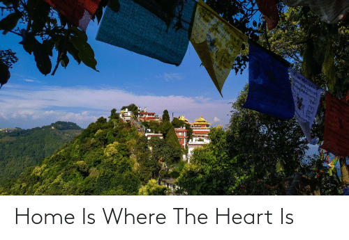 the heart: Home Is Where The Heart Is