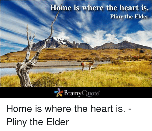 where the heart is: Home is where the heart is  Pliny the Elder  Brainy  Quote Home is where the heart is. - Pliny the Elder