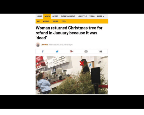 Christmas, News, and Weird: HOME NEWS SPORT ENTERTAINMENT LIFESTYLE VIDEO MORE  UK WORLD WEIRD TECH  Woman returned Christmas tree for  refund in January because it was  'dead  Jen Mills Wedneaday 10 Jan 2018 12 18 pm  G+  113