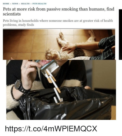 Memes, Smoking, and Pets: HOMENEWS HEALTH PETS HEALTH  Pets at more risk from passive smoking than humans, find  scientists  Pets living in households where someone smokes are at greater risk of health  problems, study finds https://t.co/4mWPlEMQCX