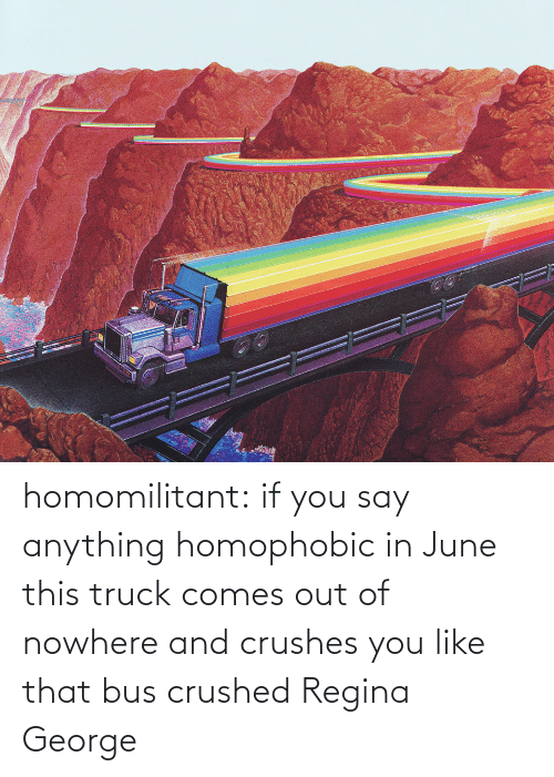 George: homomilitant: if you say anything homophobic in June this truck comes out of nowhere and crushes you like that bus crushed Regina George