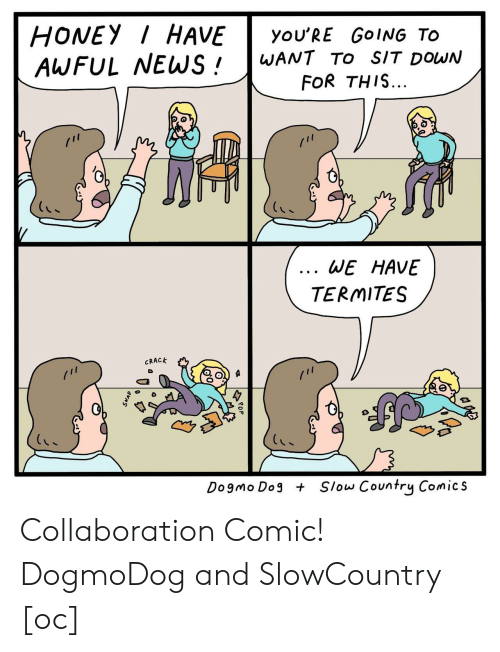 collaboration: HONEY HAVEyoU'RE GoING TO  AWFUL WEWS!WANT TO sIT DowN  FOR THIS...  0  6  WE HAVE  TERMITES  CRACK  Dogmo Dog  Slow Country Comics Collaboration Comic! DogmoDog and SlowCountry [oc]
