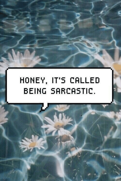 Being Sarcastic: HONEY, IT'S CALLED  BEING SARCASTIC