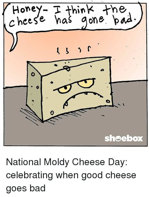 Bad, Honey, I Shrunk the Kids, and Memes: Honey- T think the  cheese has  gone bad  shoebox National Moldy Cheese Day: celebrating when good cheese goes bad