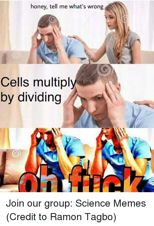 Ramon: honey, tell me what's wrong  Cells multiply  by dividing Join our group: Science Memes   (Credit to Ramon Tagbo)