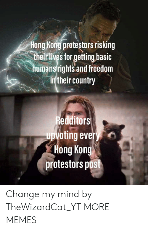 Upvoting: Hong Kong protestors risking  their lives for getting basic  humansrights and freedom  in'their country  Redditors  upvoting every  Hong Kong  protestors post Change my mind by TheWizardCat_YT MORE MEMES