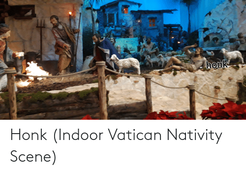 nativity: honk Honk (Indoor Vatican Nativity Scene)