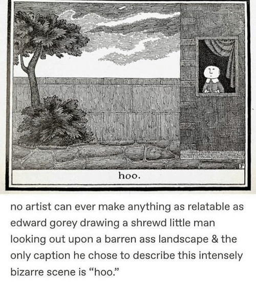 "hoo: hoo.  no artist can ever make anything as relatable as  edward gorey drawing a shrewd little man  looking out upon a barren ass landscape & the  only caption he chose to describe this intensely  bizarre scene is ""hoo.""  05"