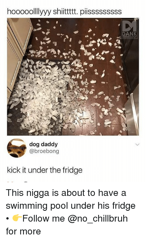 Dank, Funny, and Pool: hooooolllyyy shitttt. piisssssssss  DANK  a MEMEOLOGY  dog daddy  @broebong  kick it under the fridge This nigga is about to have a swimming pool under his fridge • 👉Follow me @no_chillbruh for more