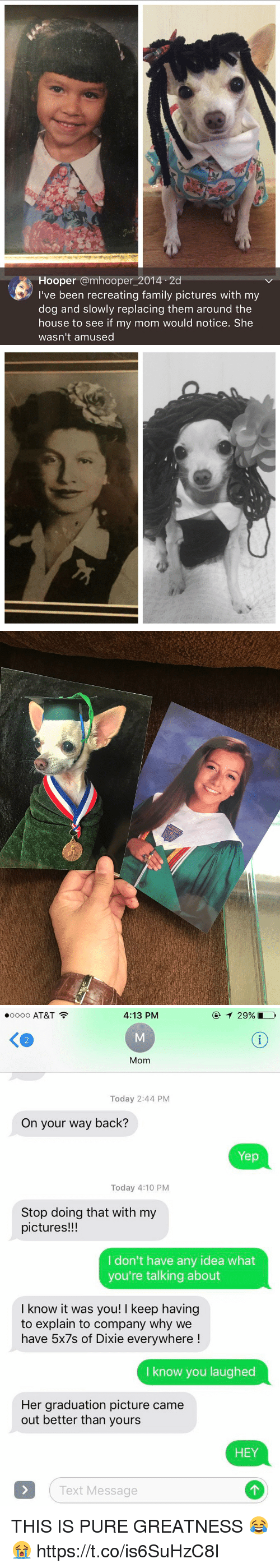 relic: Hooper amhooper 2014 2d  I've been recreating family pictures with my  dog and slowly replacing them around the  house to see if my mom would notice. She  wasn't amused   RELIC   4:13 PM  oooo AT&T  Mom  Today 2:44 PM  On your way back?  Yep  Today 4:10 PM  Stop doing that with my  pictures!!!  I don't have any idea what  you're talking about  I know it was you! l keep having  to explain to company why we  have 5x7s of Dixie everywhere  know you laughed  Her graduation picture came  out better than yours  HEY  Text Message THIS IS PURE GREATNESS 😂😭 https://t.co/is6SuHzC8I