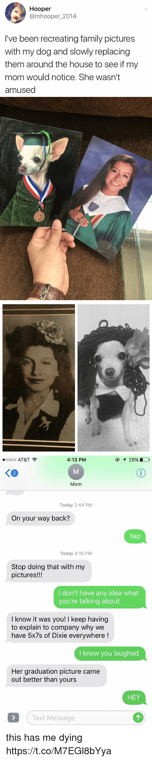 relic: Hooper  omhooper 2014  I've been recreating family pictures  with my dog and slowly replacing  them around the house to see if my  mom would notice. She wasn't  amused   RELIC   T 29%,  4:13 PM  oooo AT&T  Mom  Today 2:44 PM  On your way back?  Yep  Today 4:10 PM  Stop doing that with my  pictures!!!  I don't have any idea what  you're talking about  I know it was you! I keep having  to explain to company why we  have 5x7s of Dixie everywhere  I know you laughed  Her graduation picture came  out better than yours  HEY  Text Message this has me dying https://t.co/M7EGl8bYya