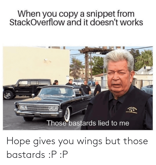 Wings: Hope gives you wings but those bastards :P :P