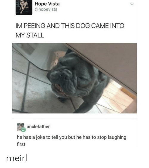 peeing: Hope Vista  @hopevista  IM PEEING AND THIS DOG CAME INTO  MY STALL  unclefather  he has a joke to tell you but he has to stop laughing  first meirl