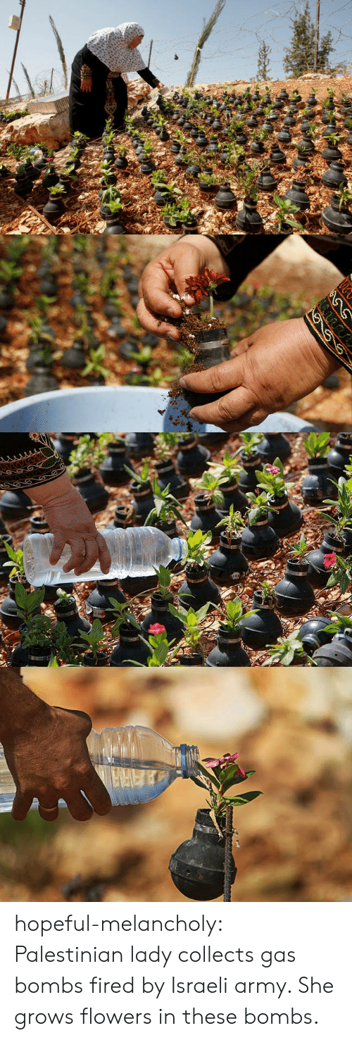 palestinian: hopeful-melancholy:  Palestinian lady collects gas bombs fired by Israeli army. She grows flowers in these bombs.