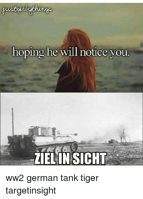 Memes, Tiger, and 🤖: hoping he will notice you.  IELINSICHT ww2 german tank tiger targetinsight