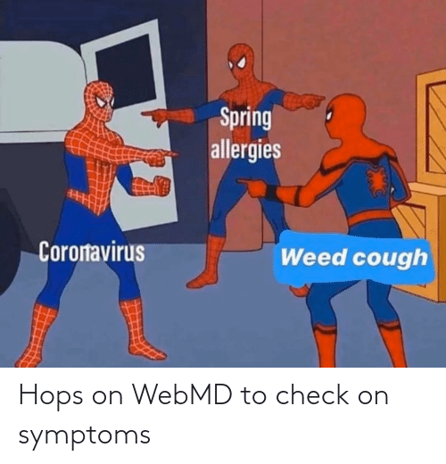 hops: Hops on WebMD to check on symptoms