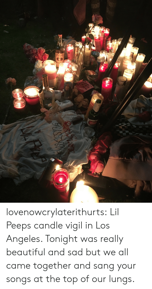vigil: HORSE lovenowcrylaterithurts:  Lil Peeps candle vigil in Los Angeles. Tonight was really beautiful and sad but we all came together and sang your songs at the top of our lungs.
