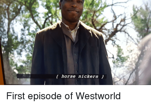 Horses, Horse, and Im Going to Hell for This: horse nickers First episode of Westworld