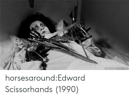 Edward Scissorhands: horsesaround:Edward Scissorhands (1990)