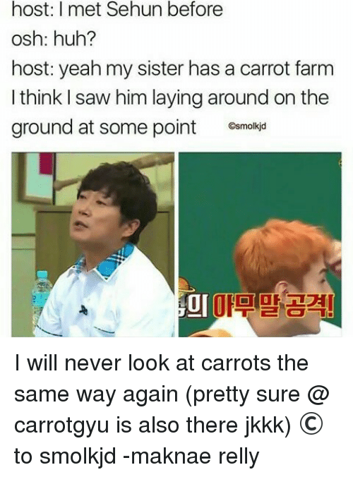 Sehun: host: I met Sehun before  osh: huh?  host: yeah my sister has a carrot farm  I think I saw him laying around on the  ground at some point C  Gsmolkjd  미마고계 I will never look at carrots the same way again (pretty sure @ carrotgyu is also there jkkk)  © to smolkjd  -maknae relly