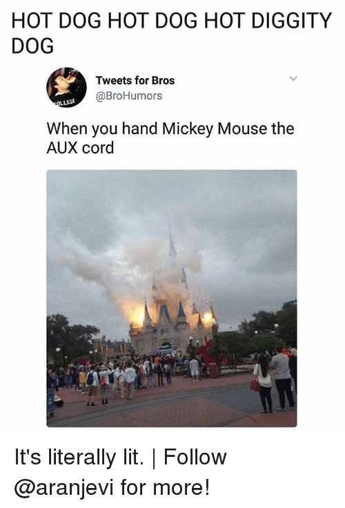 Lit, Memes, and Mickey Mouse: HOT DOG HOT DOG HOT DIGGITY  DOG  Tweets for Bros  @BroHumors  When you hand Mickey Mouse the  AUX cord It's literally lit. | Follow @aranjevi for more!