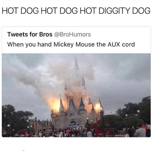 Mickey Mouse, Mouse, and AUX Cord: HOT DOG HOT DOG HOT DIGGITY DOG  Tweets for Bros @BroHumors  When you hand Mickey Mouse the AUX cord  2)
