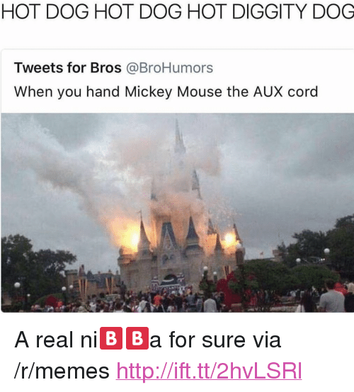 "Memes, Http, and Mickey Mouse: HOT DOG HOT DOG HOT DIGGITY DOG  Tweets for Bros @BroHumors  When you hand Mickey Mouse the AUX cord <p>A real ni🅱️🅱️a for sure via /r/memes <a href=""http://ift.tt/2hvLSRl"">http://ift.tt/2hvLSRl</a></p>"