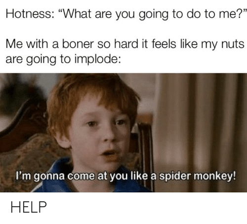 "spider monkey: Hotness: ""What are you going to do to me?""  Me with a boner so hard it feels like my nuts  are going to implode:  I'm gonna come at you like a spider monkey! HELP"
