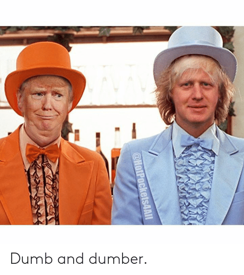 dumber: @HotPockets4AIl Dumb and dumber.