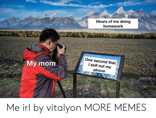 doing homework: Hours of me doing  homework  One second that  I pull out my  phone  My mom Me irl by vitalyon MORE MEMES