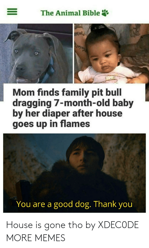 gone: House is gone tho by XDEC0DE MORE MEMES
