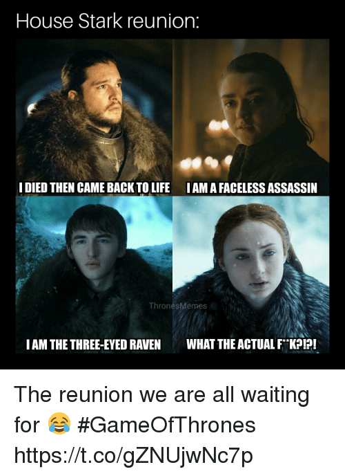 Starked: House Stark reunion:  I DIED THEN CAME BACK TO LIFE IAMA FACELESS ASSASSIN  ThronesMemes  IAM THE THREE-EYED RAVENWHAT THE ACTUAL FK! The reunion we are all waiting for 😂 #GameOfThrones https://t.co/gZNUjwNc7p