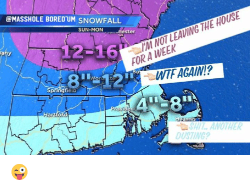 Masshole: HOUSE  THE LEAVING NOT /M @MASSHOLE BORED'UM SNOWFALL  SUN-MON  nester  12-16  FORA WTF AGAIN?  Springfield  ord  nniS  SHI ANOTHER  DUSTING? 😜