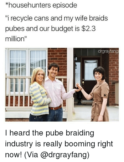 "Braids, Memes, and Budget: *househunters episode  i recycle cans and my wife braids  pubes and our budget is $2.3  million""  drgrayfang I heard the pube braiding industry is really booming right now! (Via @drgrayfang)"