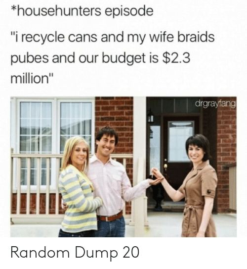 "Braids: *househunters episode  ""i recycle cans and my wife braids  pubes and our budget is $2.3  million""  drgrayfang Random Dump 20"